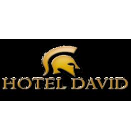 hotel-david.png